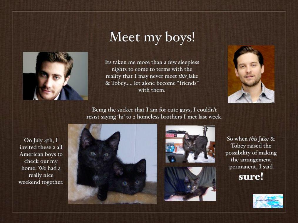 Meet my boys.001