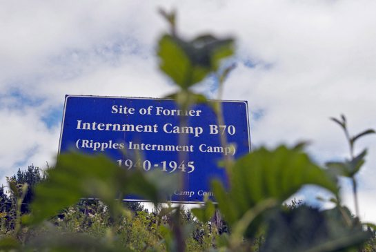 camp_sign.jpg.size.xxlarge.promo
