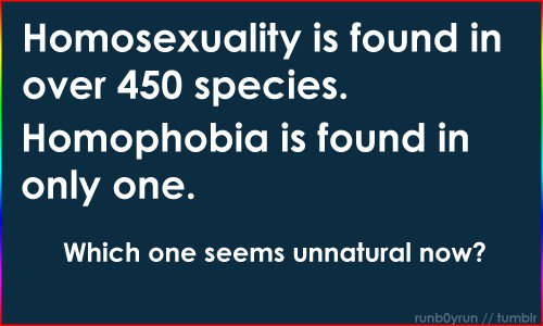 homosexual_species