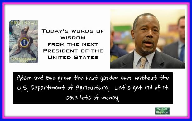 Words of Wisdom #1