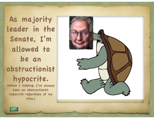 Mcconnel tortise.key